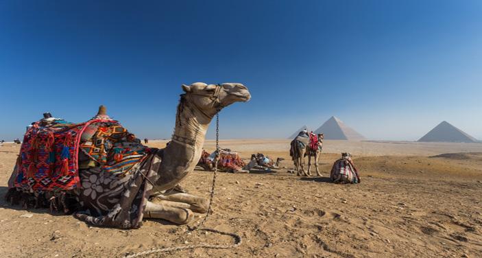 אזור הפרמידות של מצרים. צילום Depositphotos