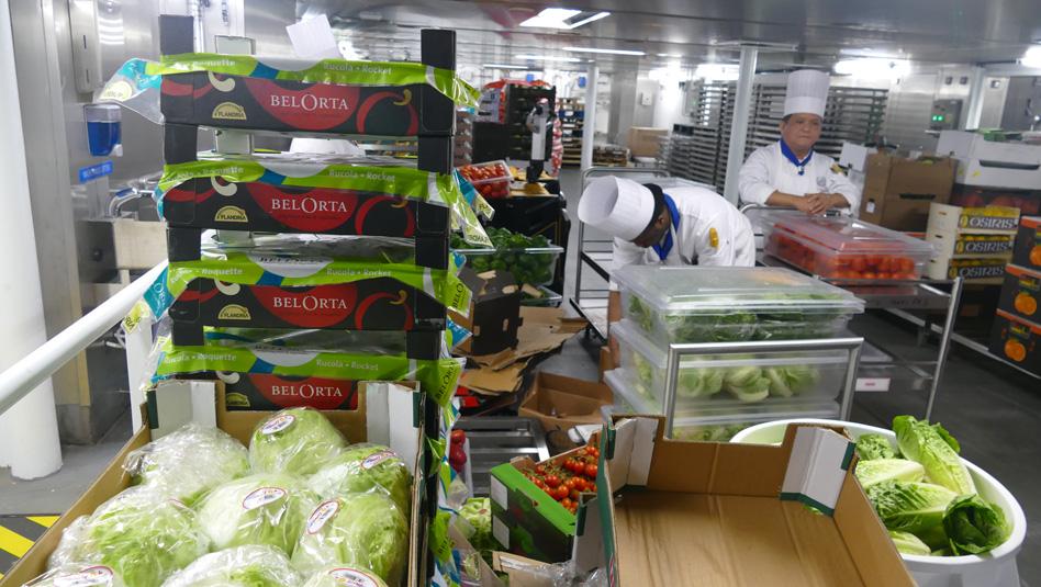 המטבח באנייה (Galley)- אחד המקומות הרגישים למניעת זיהומים. צילום: Depositphotos